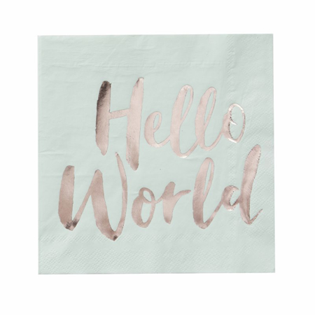 Slika za Ginger Ray® Salvete Hello World 20 komada