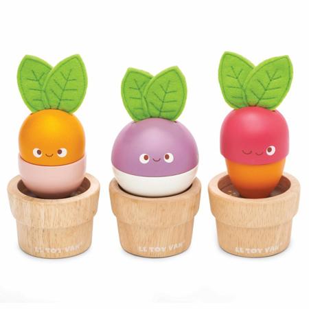 Slika za Le Toy Van® Zelenjava na vrtu