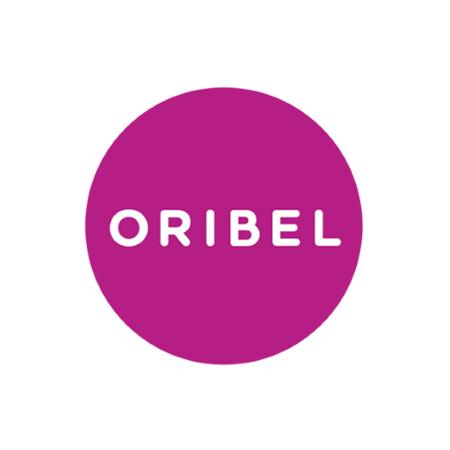 Slika za Oribel® Didaktička igračka Vertiplay Stem Merble Run School