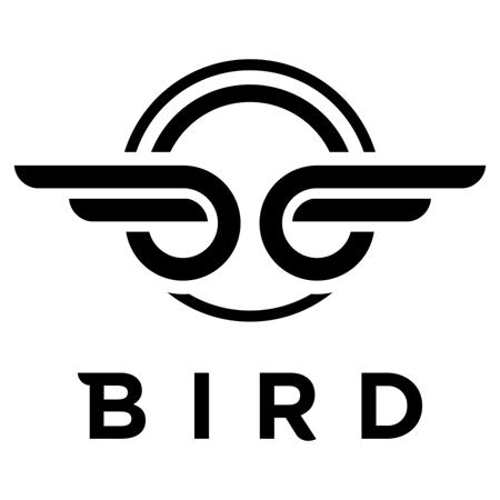 Slika za Bird® Dječji romobil Birdie V2 Jet Black