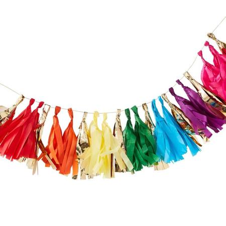 Slika za Ginger Ray® Pom Pom Girlanda Rainbow